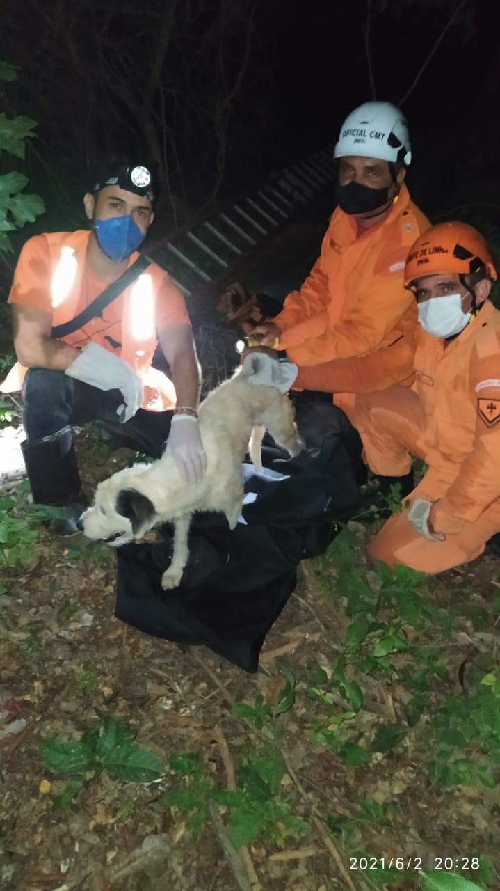 Corpo de Bombeiros resgata cachorro que caiu em cacimba no Trairi