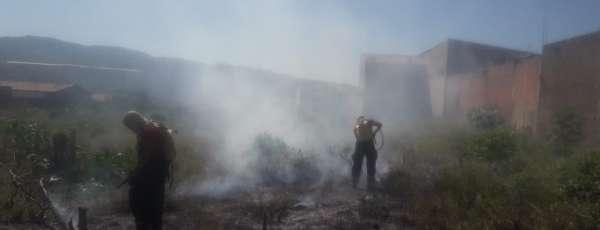 Corpo de Bombeiros debela incêndios em vegetação em Fortaleza e Juazeiro do Norte