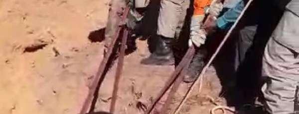 Bombeiros resgatam bezerro que caiu em valeta no Crato