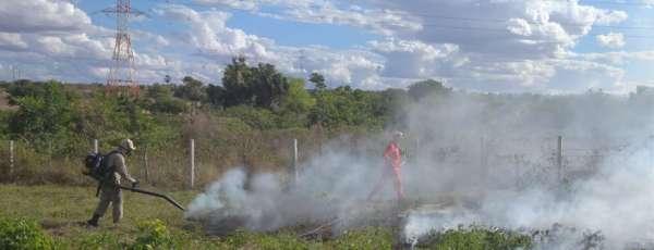 Corpo de Bombeiros debela incêndio em vegetação no município de Russas