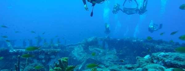 Alunos do CMAUT realizam mergulho no naufrágio do Pecém