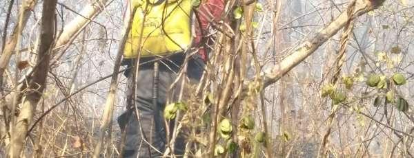 Bombeiros de Maracanaú apagam incêndio em vegetação na Serra da Pelada em Maranguape
